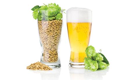 alimentos bebidas fertilizantes sucroalcooeiras e agropecuaria